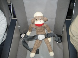 All buckled up and ready for takeoff!