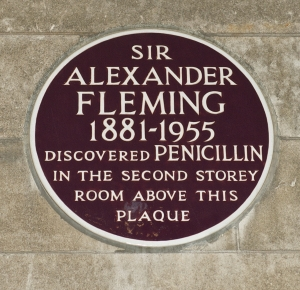 Fleming's lab has been preserved at St. Mary's Hospital in London, presumably exactly as he left it. You don't even want to know what's growing in there after sixty years. Or maybe you do.