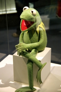 photo credit: Kermit the Frog - Smithsonian Museum of Natural History - 2012-05-15 via photopin (license)