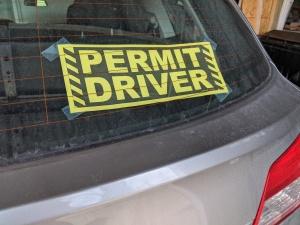 permit driver